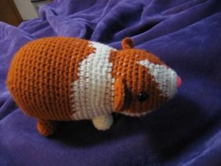 guinea pig named Pikachu - original