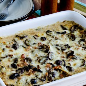 Alice Springs Chicken Casserole close-up photo