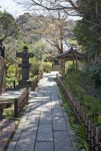 安国論寺境内。山門をくぐると端正に設えられた参道が本堂へと続きます。