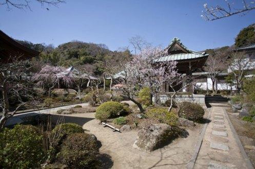 見事に調和した自然とアートの空間。この空間設計が海蔵寺の魅力です。