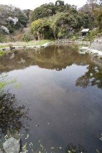 日蓮聖人雨乞霊跡、田辺ヶ池。