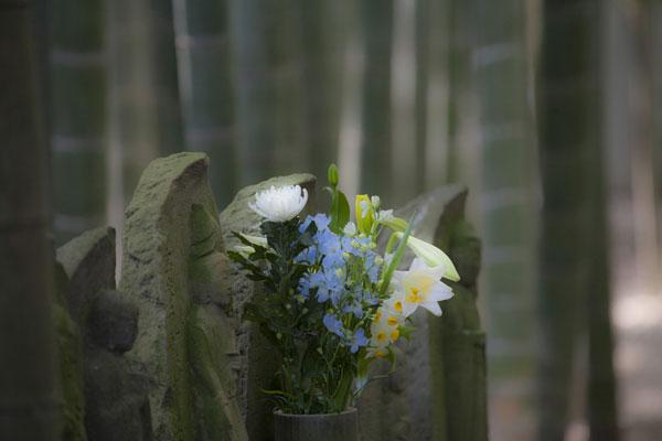竹林の六地蔵に添えられた花。咲く花と添えられた花、どちらも魅力的です。