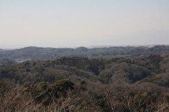 展望台。鎌倉市街方面を見ます。