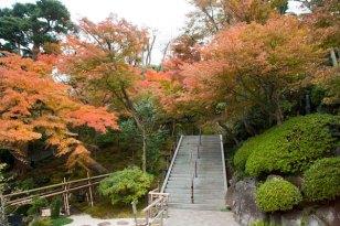 麓からまずは紅葉に囲まれた階段を登ります。