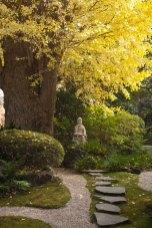 紅葉だけでなく、周囲が整っているのが寺社紅葉散策の魅力です。