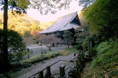 鎌倉最大級の木造仏殿、妙本寺の祖師堂。