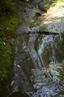 きれいな水、水によって長い時間をかけて削られた岩肌が人を落ち着かせます。