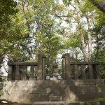 新緑に囲まれた日野俊基の墓。紅葉しそうな感じなのですが、そうでもありません。
