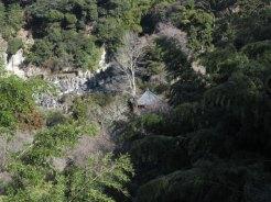 天園ハイキングコース瑞泉寺〜獅子舞上合流地点間。瑞泉寺を見下ろしながら進みます。