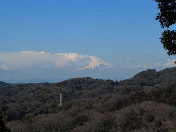 〔地図22〕天園ハイキングコース瑞泉寺〜獅子舞上合流地点間。富士山がみえます。