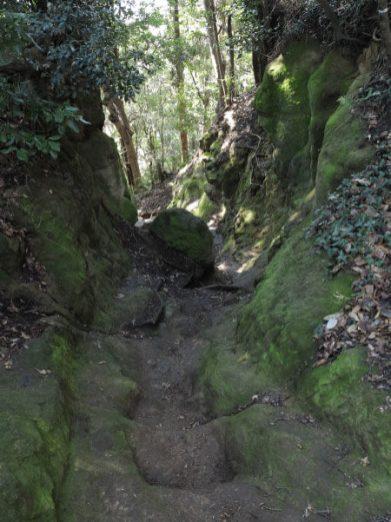 天園ハイキングコース瑞泉寺〜獅子舞上合流地点間。鎌倉らしい切通し。