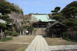 龍口寺境内。正面が本堂です。