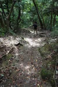 葛原岡・大仏ハイキングコース。鎌倉散策は、梅であれなんであれ静けさが何より大切。この道ならもっとも邪魔な存在のひとつ、車が避けられます。