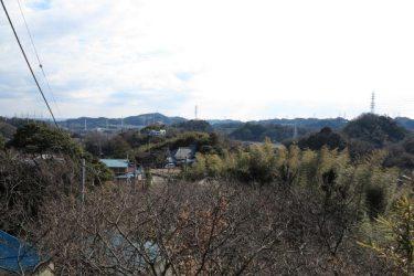 衣笠城址からの眺望。