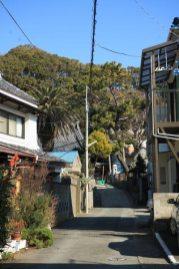 大椿寺。三崎港から歩いていくと、北条湾の反対側にあります。海沿いから少し細い道を入ります。