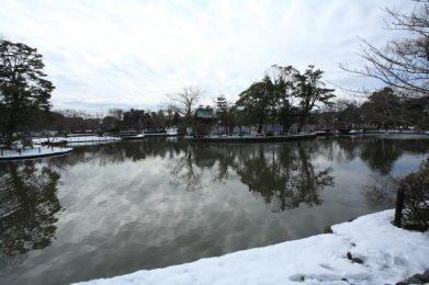 雪景色の源氏池。記録的な大雪となった平成26年(2014年)2月8日から一夜明けた9日の写真です。雪が降ると境内にある神苑牡丹園は雪と寒牡丹という最高の景色が見られます。