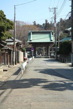 夷堂橋を渡ったら左手に進むと、妙本寺の門が見えてきます。妙本寺の門のところで道は3つにわかれますから右の細い道を進みます。