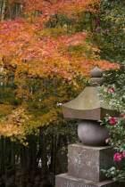 〈王道〉金沢街道をゆく。報国寺の紅葉。