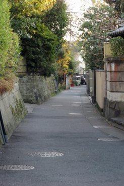 この細い道は車も通りませんし静かでよいです。道沿いには常栄寺(ぼたもち寺)、八雲神社があります。とにかく散歩にとって迷惑でしかない車とほとんど出会わないのがよし。