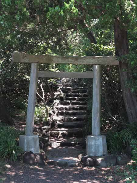 森戸大明神本殿右手から裏に回ると木の鳥居がみえてきます。ここから御神木、飛柏槙(ビビャクシン)にむかって少し階段を上ります。とても魅力的な風景です。