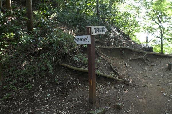 天園ハイキングコース、瑞泉寺口から入り、25分ほど歩くと獅子舞への分岐点があり、道標がたてられています。