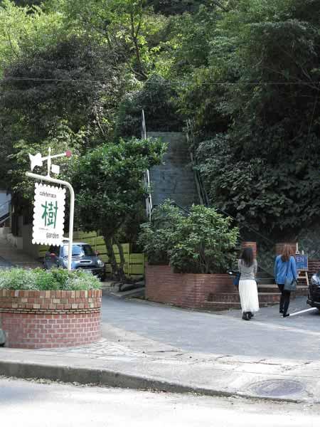 樹ガーデン、平地の入口。