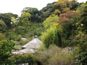 光則寺の紅葉。日朗土牢前からの光景。しみじみと秋を感じます。