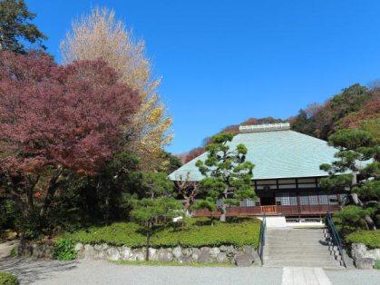 浄妙寺の本堂と紅葉、銀杏。
