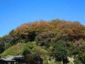建長寺回春院と山の秋。