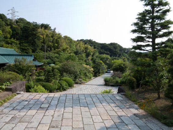 龍寳寺本堂からみる境内。