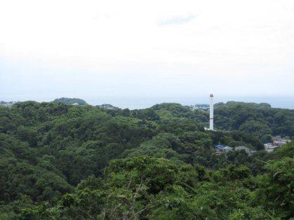 平成巡礼道。衣張山山頂を過ぎた平場からの展望。