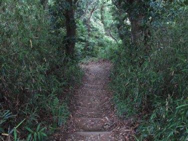 平成巡礼道。衣張山山頂を過ぎて。