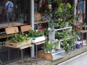 御成通りのFlower&Cafe、Rakaposhi(ラカポシ)。店頭には花木が並んでいます。