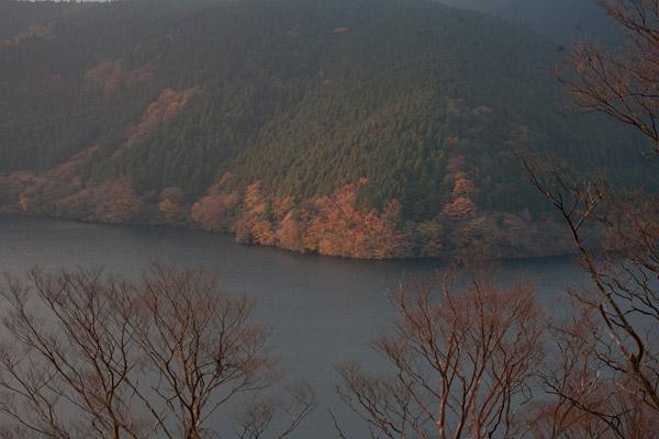 紅葉する朝靄の芦ノ湖。