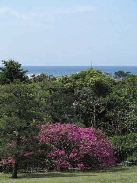 鎌倉文学館(旧前田侯爵家別邸)からのぞむ由比ヶ浜。