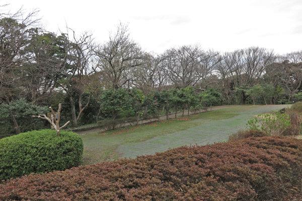 平成30年(2018年)3月23日(金)、源氏山の桜。源頼朝像周辺です。まだほとんど咲いていません。