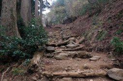 大山阿夫利神社本社への巡礼登山道。【大山阿夫利神社】