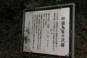 121_doushi_tameshigiriishi_15
