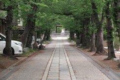 称名寺の参道