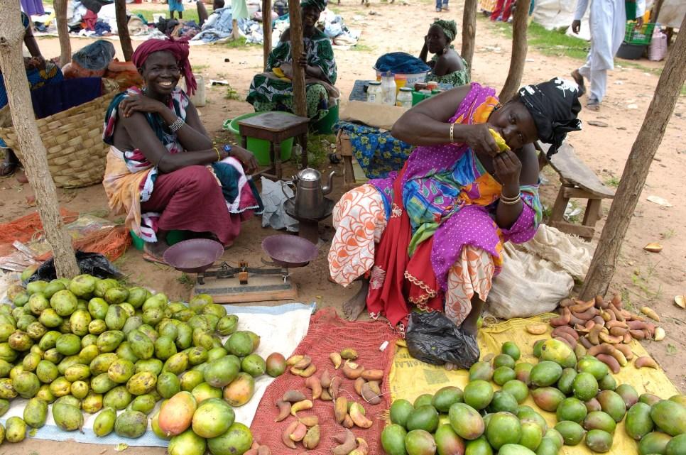 GAMBIA. Mercado (lumo) del domingo en FARAFENNI.