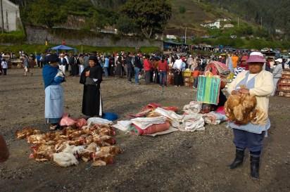 ECUADOR. OTAVALO. Mercado de animales.