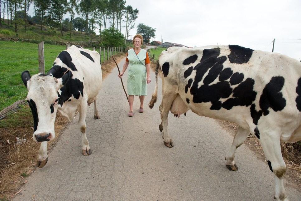 Asturias Camino Primitivo