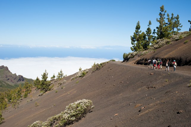 Tenerife ruta volcanes_18