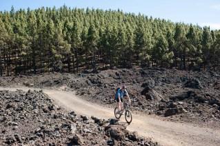 Tenerife ruta volcanes_21