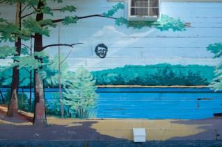 Walden_Concord_Thoreau_08