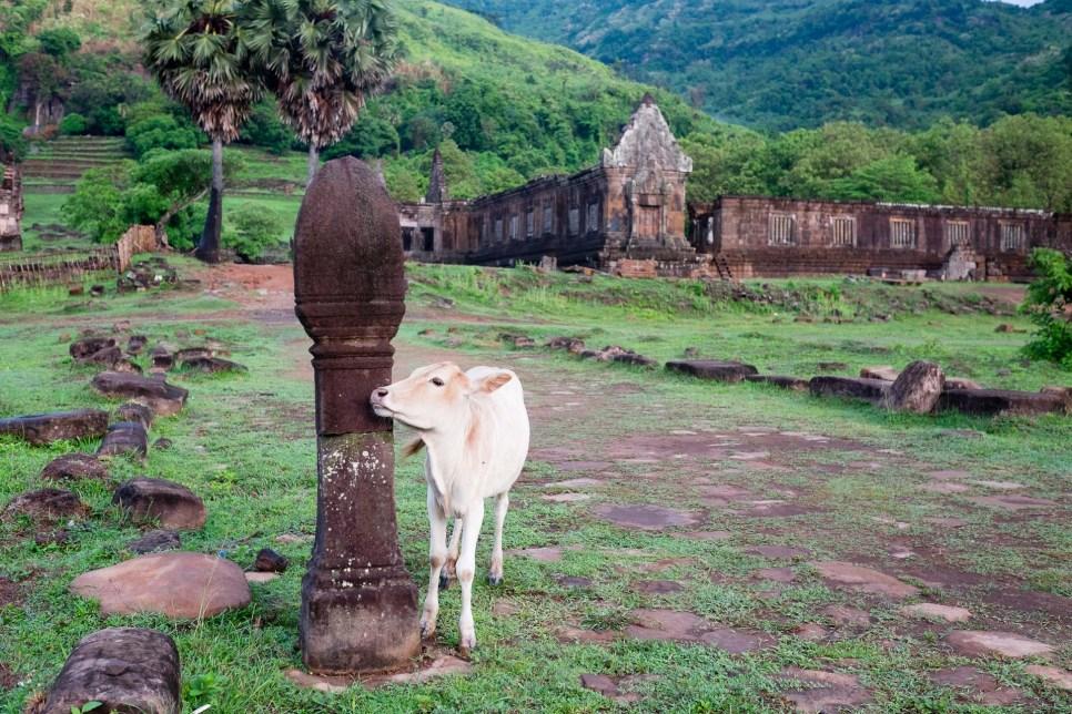 Wat Phu Champasak Laos-1