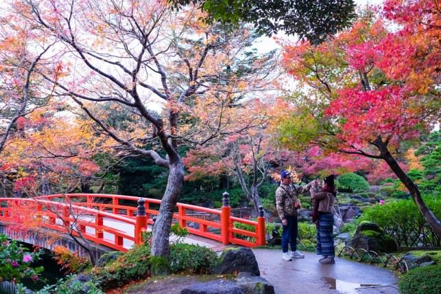 Jardín Japón