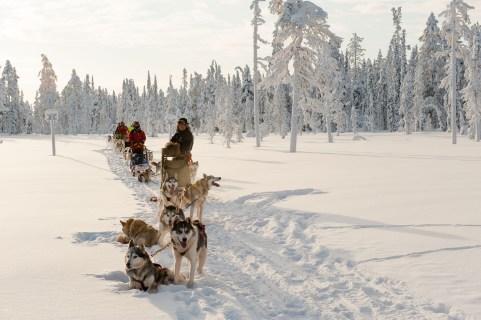 Laponia Finlandia_06