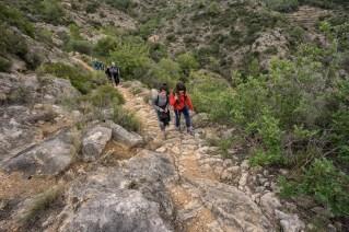 Camino de Fontelles.