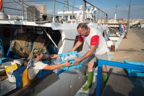 Descargando la pesca del día en el puerto.